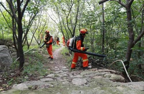 淄博8区县增招森林专职消防员50名