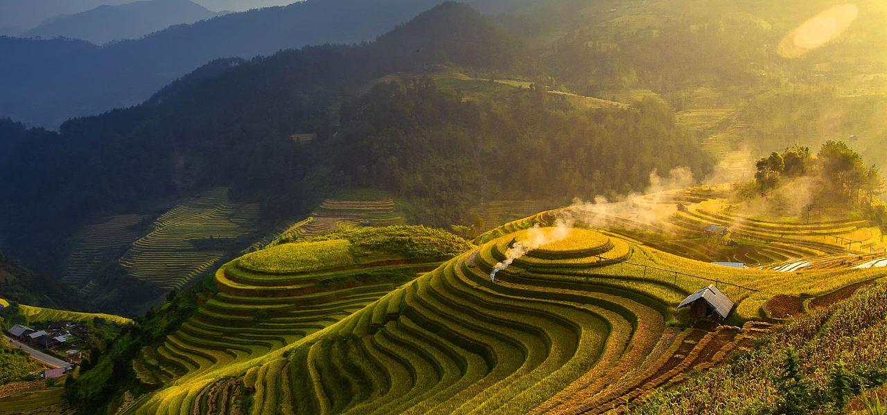 """我国粮食取得""""十六连丰"""" 总产量增加了54%"""