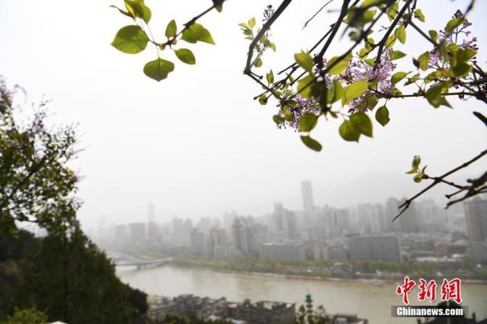 资料图:沙尘天气。<a target='_blank' href='http://www.chinanews.com/'>中新社</a>记者 杨艳敏 摄