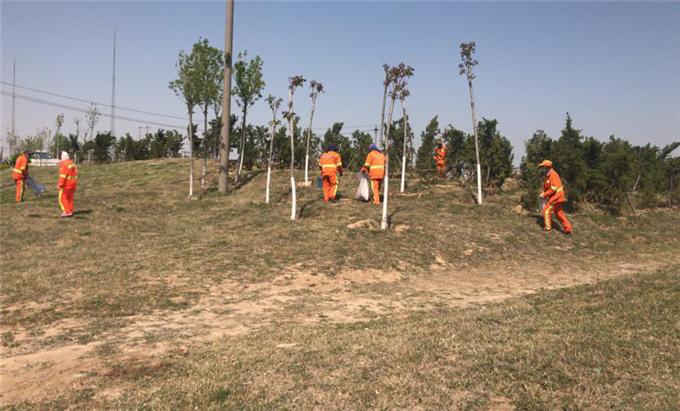 仙河镇三举措大力提升农村人居环境