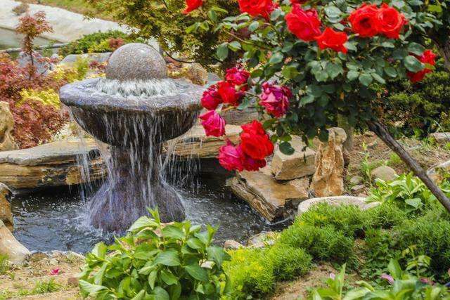 青岛西海岸新区花都艺博园盛大开园