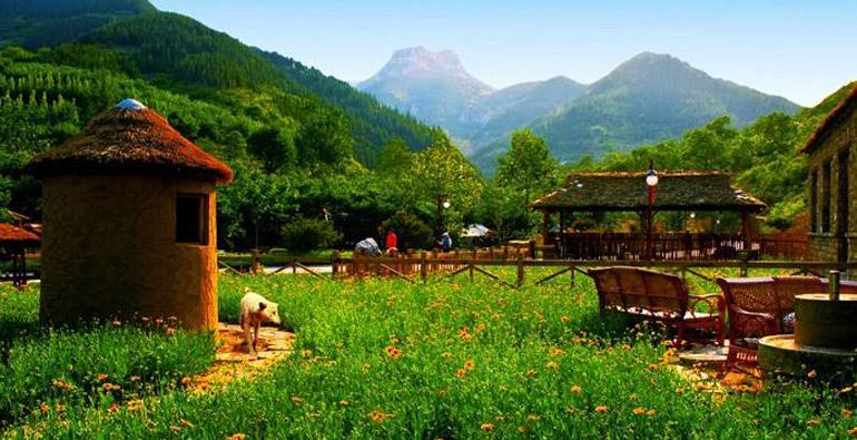 这几个清爽景美的小众秘境里,藏着潍坊最爽的夏天