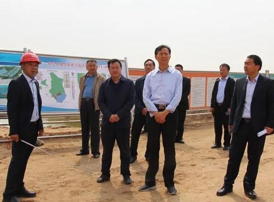 陈泽浦调研通威东营渔光一体生态园项目