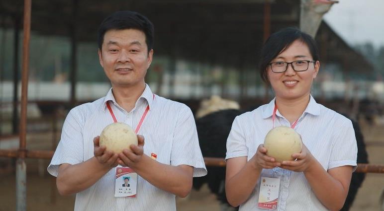 """金乡县:""""三个一批""""提升第一书记 驻村帮扶质效"""