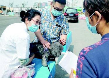潍坊多部门联合举办活动,倡导市民科学文明养宠