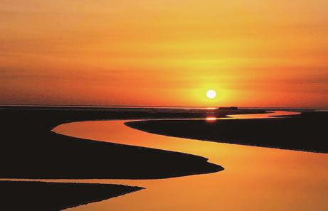东营境内的黄河 黄河是如何几经改道最终从东营汇入大海的