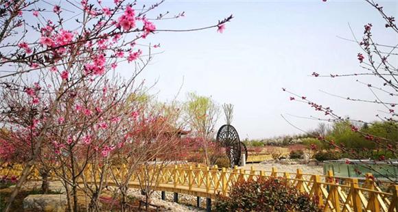 泰山天颐湖郁金香文化节盛装启幕 人气火爆 活动多彩!