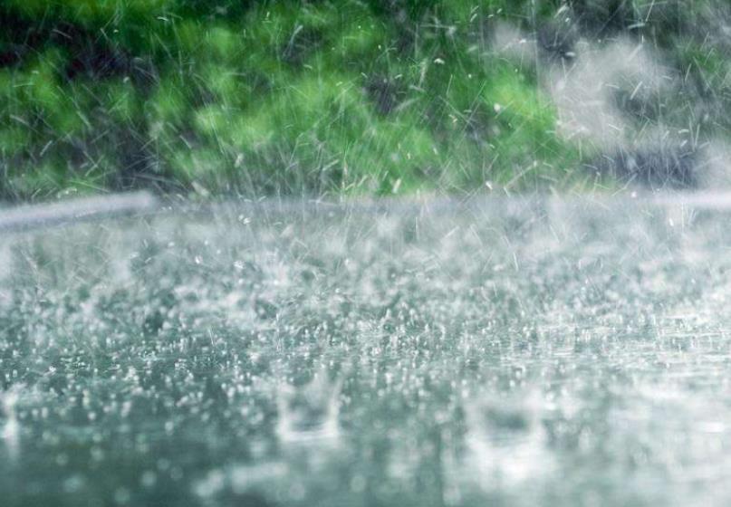 济宁本周迎降雨 高温天暂时离场