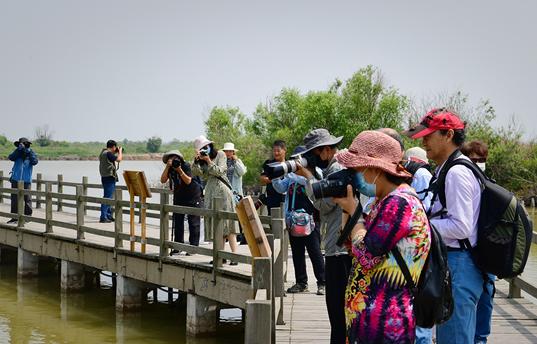 """""""走进黄河口生态旅游区""""摄影采风创作活动举行"""