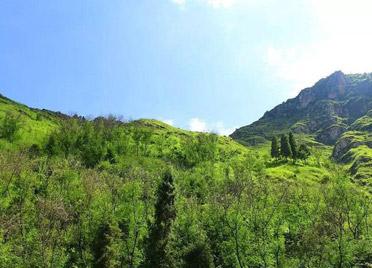 《潍坊市天然卤水矿绿色矿山建设指导意见》发布实施