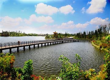 威海林泉河濕地工程年底將全面收官
