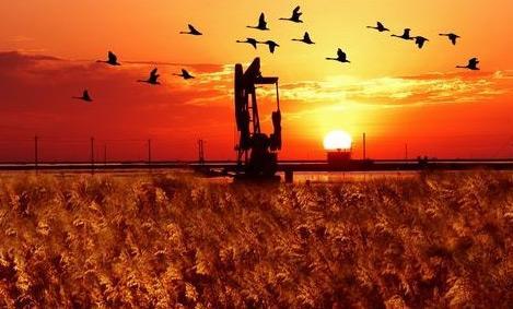 孤东采油厂牵手石油工程技术研究院增油创效