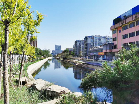 淄博口袋公园:城市拐角遇见美