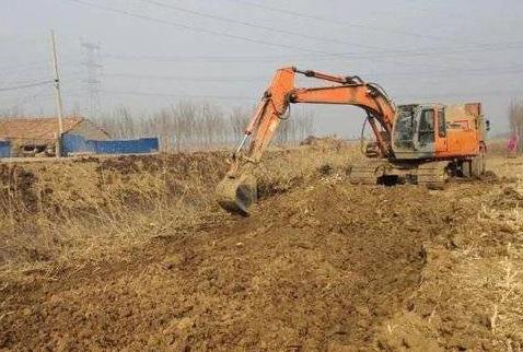 东城街道0.5万亩高标准农田建设项目顺利通过竣工验收