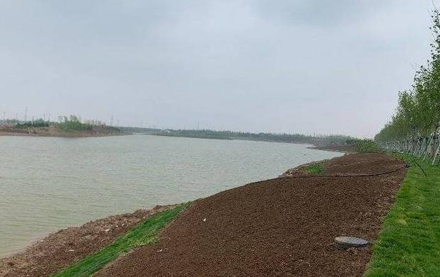 东营市中心城2020年度生态补水任务全面完成