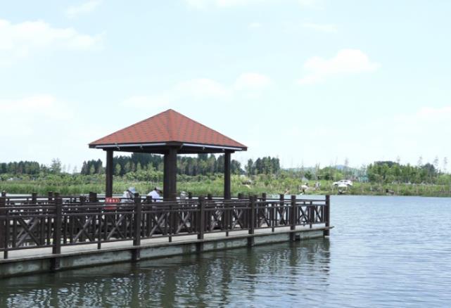 蹲点乡村看振兴   枣庄周营镇:一条河带来的幸福生活