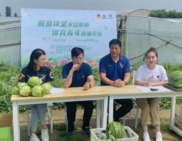 瓜果蔬菜站C位 青岛体育青年为质优农品倾情代言