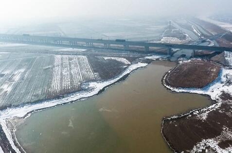 黄河滩区湿地:这里风景美如画