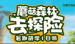 2020花仙谷自然生态科学暑期研学夏令营招生了!