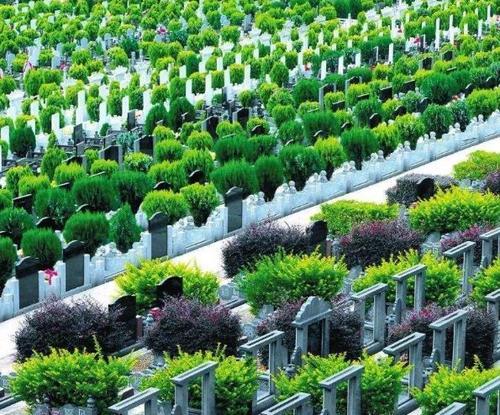 2020年底聊城各县区至少建成1处公益性公墓