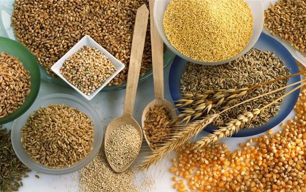 中国夏粮丰收助力全球粮食安全