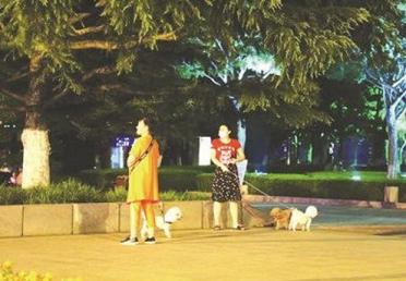 公园遛狗栓绳吗?文明观察小分队上街察看