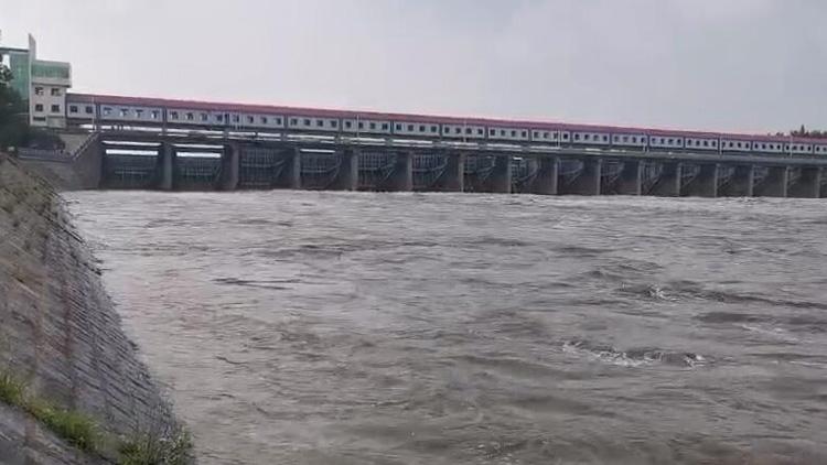 21秒|临沂沭河洪水平稳回落 洪水流量降为1910m³/s
