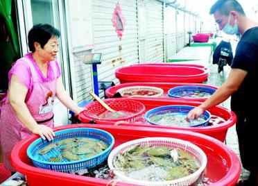 南方梭子蟹潍坊大量上市 但今年不吃香