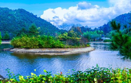 上半年淄博市获得生态补偿资金2456万元