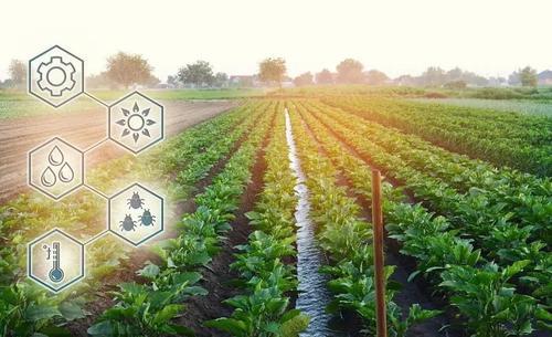 积极探索数字农业农村发展新路径 打造淄博乡村产业振兴新引擎