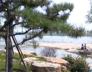十月份全部开园!高新区鸿雁湖项目最新进展来了