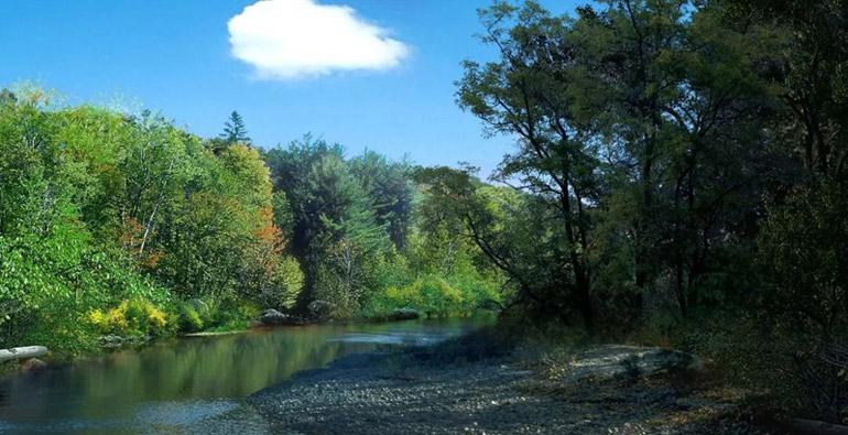 潍坊张面河下游主河道全部打通 防洪标准达到30年一遇