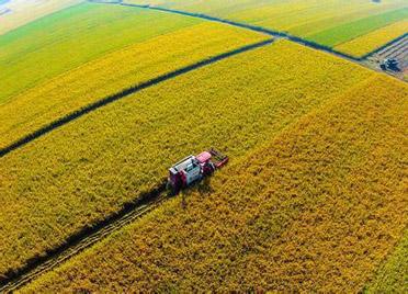 潍坊关于支持农业农村优先发展的若干政策措施