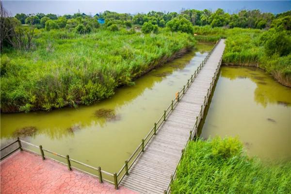 @东营人!七夕节,和爱人一起畅游黄河口