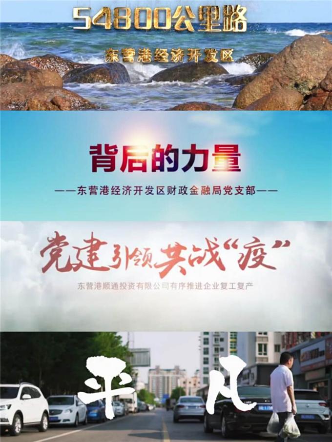 2.系列宣传教育片