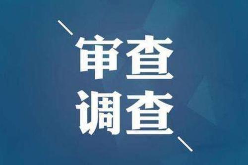 淄博市原园林管理局副局长王冬梅接受审查调查