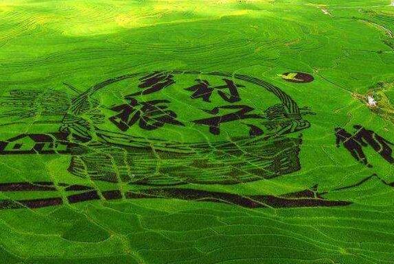 垦利区大力培育高素质农民,助力人才振兴