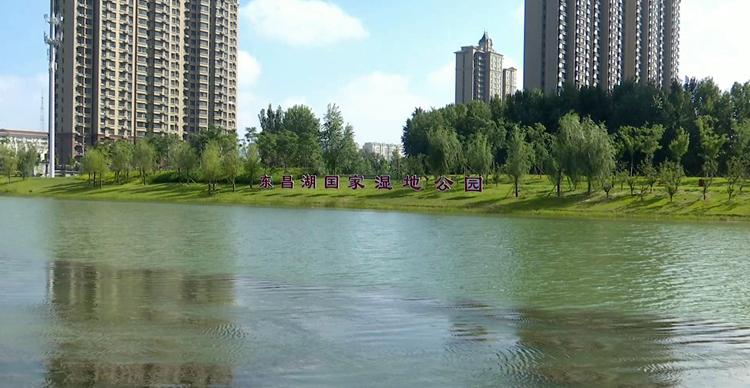 聊城又多一处休闲好去处!东昌湖国家湿地公园建成并免费开放