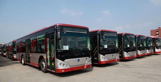 淄博市三条公交线路走向调整