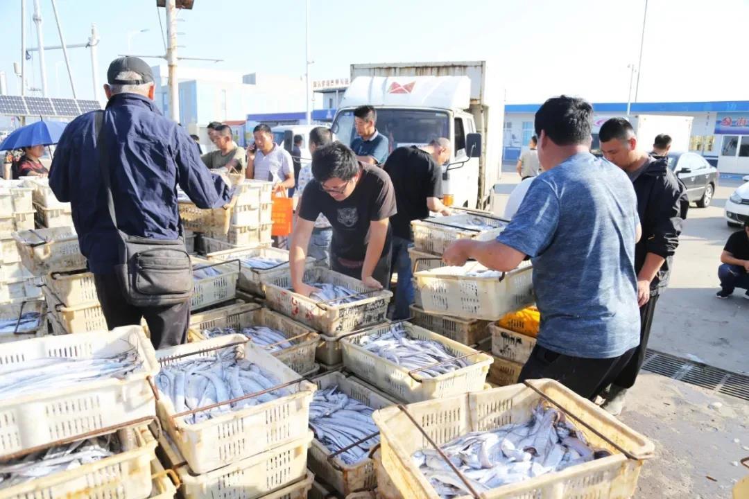 日照黄海中心渔港进入国家级名单!