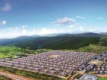 托起乡村产业振兴新希望 ——济宁市全力做大做强新型农业经营主体综述