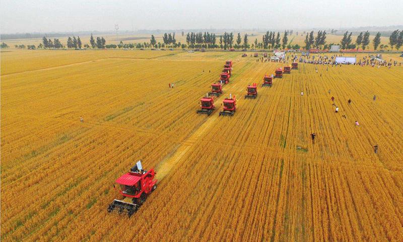 优质粮食工程投资逾800亿元