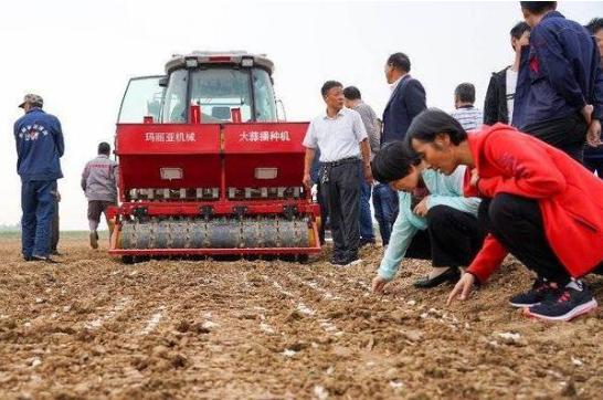 广饶县花官镇:四方共建示范基地,推动大蒜生产全程机械化