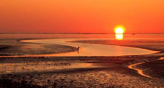 注意!黄河口生态旅游区运营时间调整