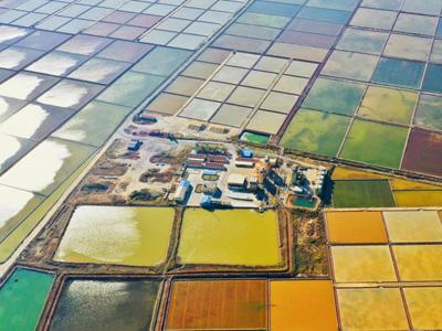 神奇的自然之美丨昌邑市下营盐田:秋日里的天然彩色画板
