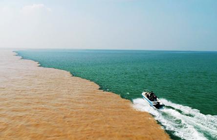 东营市全面践行黄河流域生态保护和高质量发展国家战略纪实