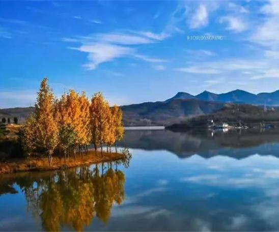 让五莲蓝告诉你,深秋的最美是什么……