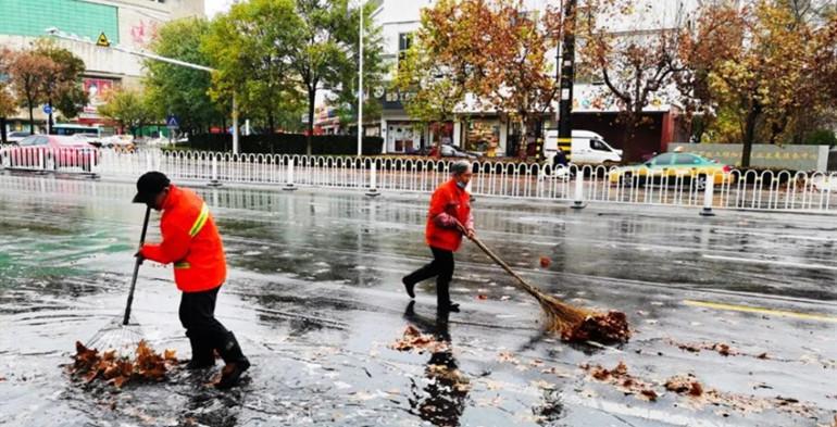 天不亮就上路清理!潍坊雨后落叶贴地,辛苦了环卫工人