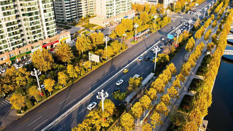"""畅通城市""""主动脉"""" 聊城市城区东昌路拥堵节点全部打通"""