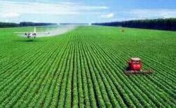 淄博将规范和加强土地整治工作 新增耕地必须用于农业生产